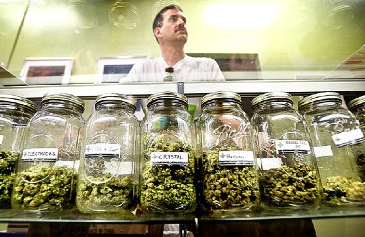 Legalna marihuana przeszkadza meksykańskim kartelom