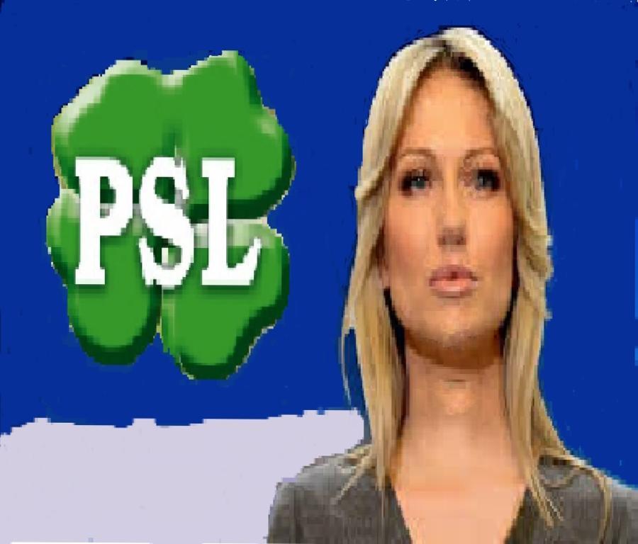 Ogórek i Miller - nowe twarze PSL