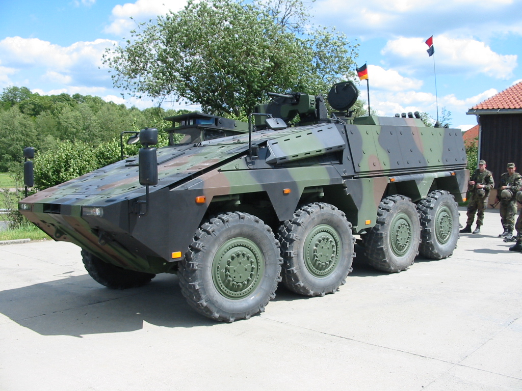 Niemiecki rząd odrzucił prośbę Litwy o dozbrojenie jej armii