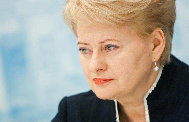 Prezydent Litwy: Dostarczamy Ukrainie broń defensywną