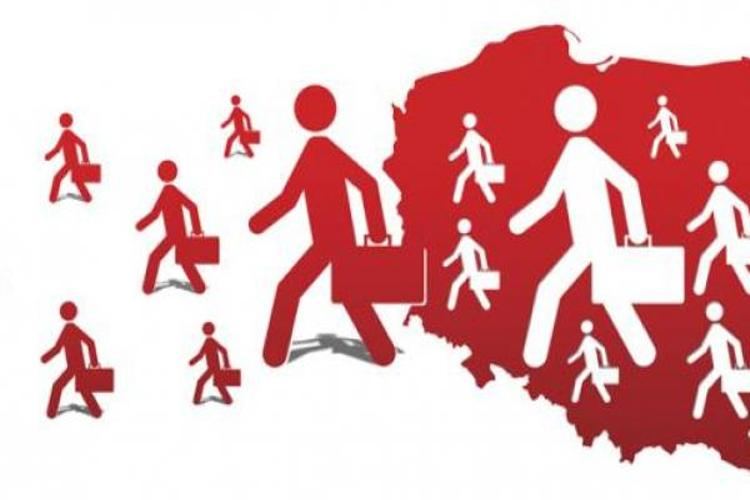 Posłanka PO o emigracji młodych: Chcą zobaczyć inne kraje