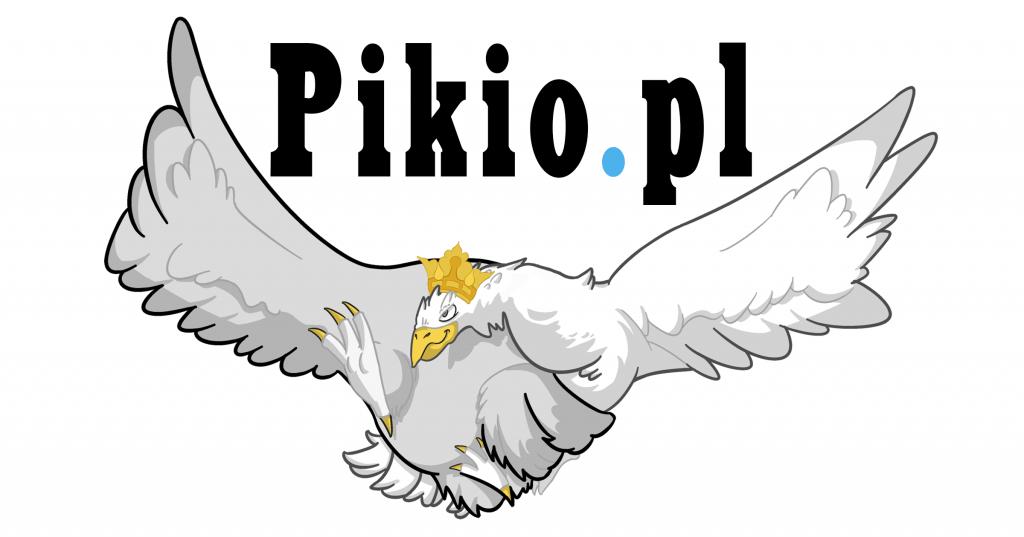 Czytelnicy pikio.pl przeciwko JOW-om i za likwidacją finansowania partii z budżetu