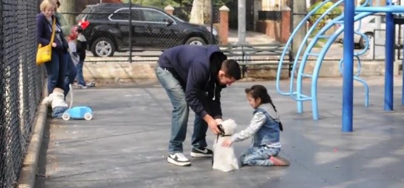 Czy porwanie dziecka jest łatwe? Szokujący eksperyment (video)