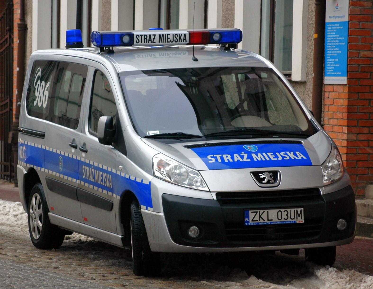 Interwencja Straży Miejskiej z perspektywy strażników (video)