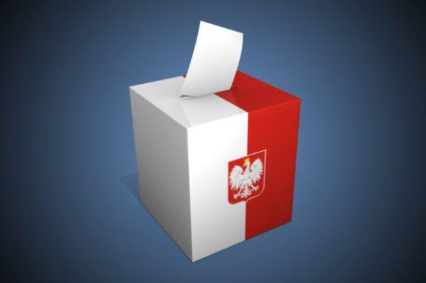 Tak głosowali młodzi. Zobacz wyniki wyborów w grupie 18-24