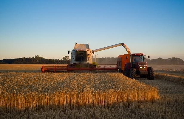 Na 1,5 mln rolników tylko kilkudziesięciu ubezpieczyło się od suszy