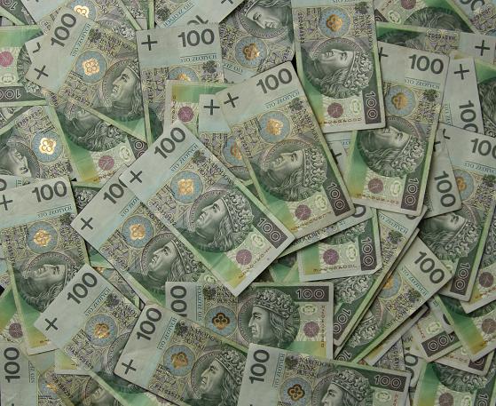Polska straciła 53 miliardy dolarów. System chroniący przed transferem dochodów nie działa.