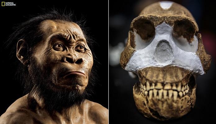 Odkryto nowy gatunek człowieka
