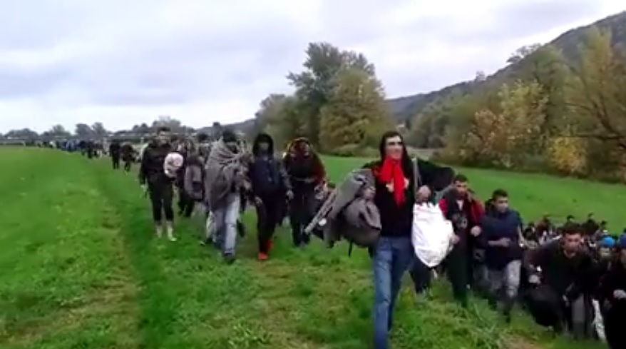 Imigranci z Turcji uciekali przed Strażą Graniczną. Dachowało BMW z... 13 osobami