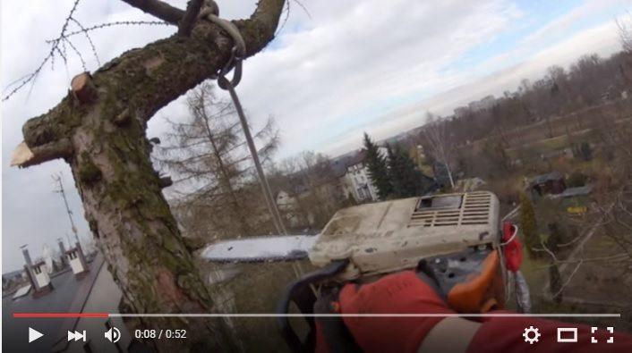 Członek Partii Razem pozdrowił prawicę z... drzewa (video)