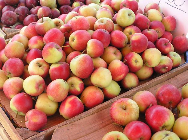 Białoruska firma wwiozła do Rosji polskie owoce. Zniszczono 58 ton jabłek