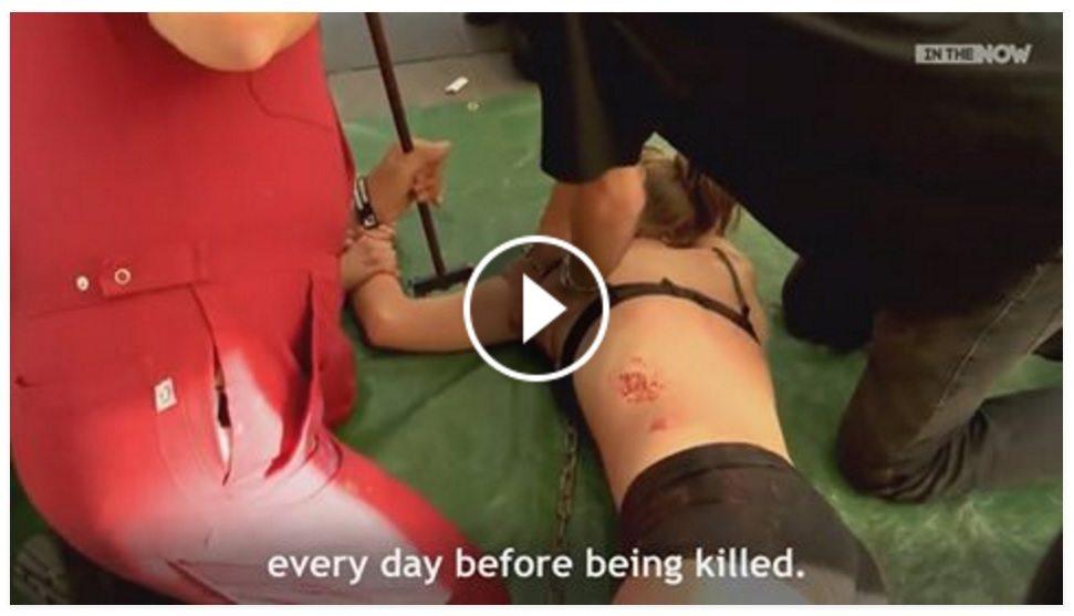 """Weganie poddają się brutalnym torturom. """"Solidaryzujemy się z krowami"""" (video +18)"""