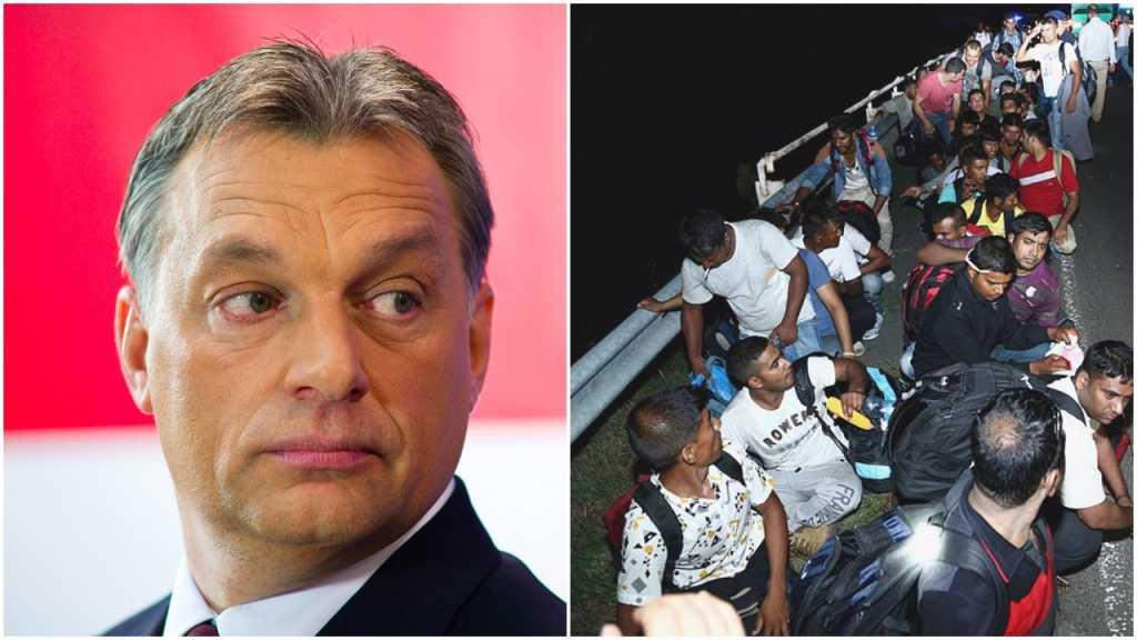 Zwrot akcji na Węgrzech. Referendum ws. imigrantów zostanie unieważnione