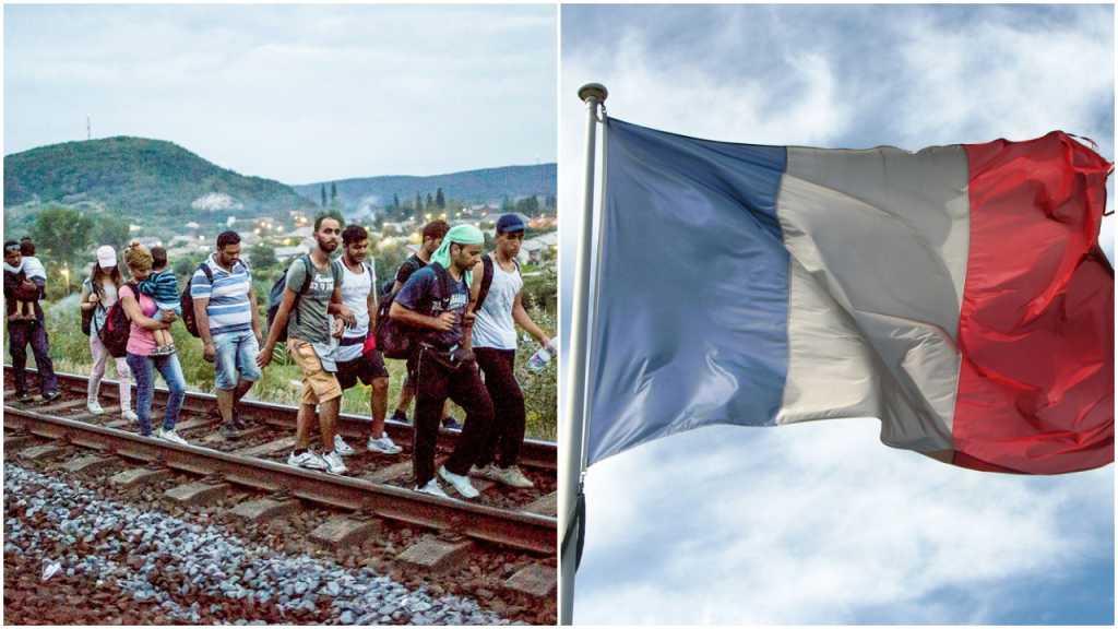 Masoni do francuskich władz: Nadajcie obywatelstwa imigrantom z Calais