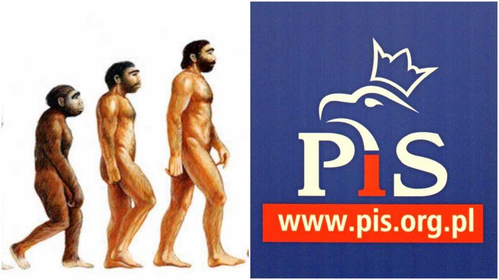 PiS usunął teorię ewolucji z wymagań dla uczniów
