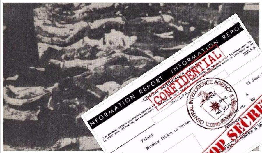 Szokujący raport CIA odtajniony. Na terenie Polski po wojnie miało miejsce nieznane dotąd ludobójstwo 10 000 osób