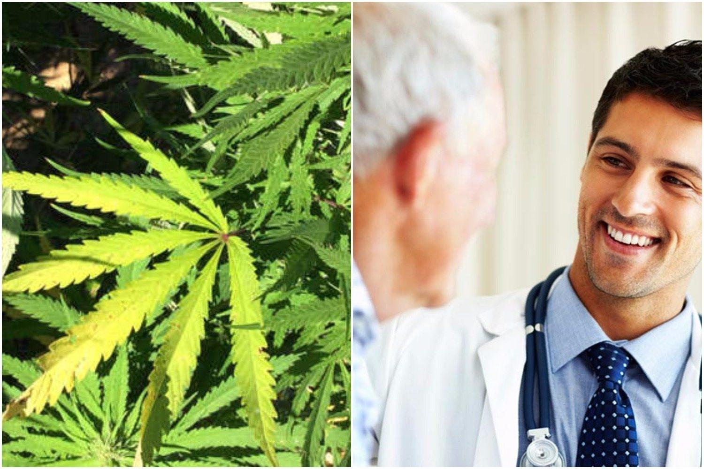 Szpital w Lublinie leczy medyczną marihuaną. Lekarze i pacjenci w szoku, są ZACHWYCENI