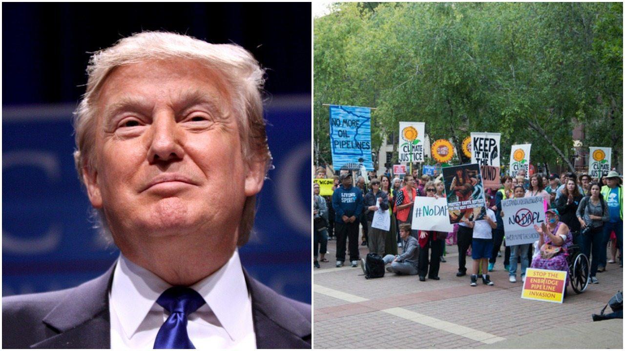 Trump jedną decyzją rozwścieczył ekologów. Chcą go pozwać do sądu