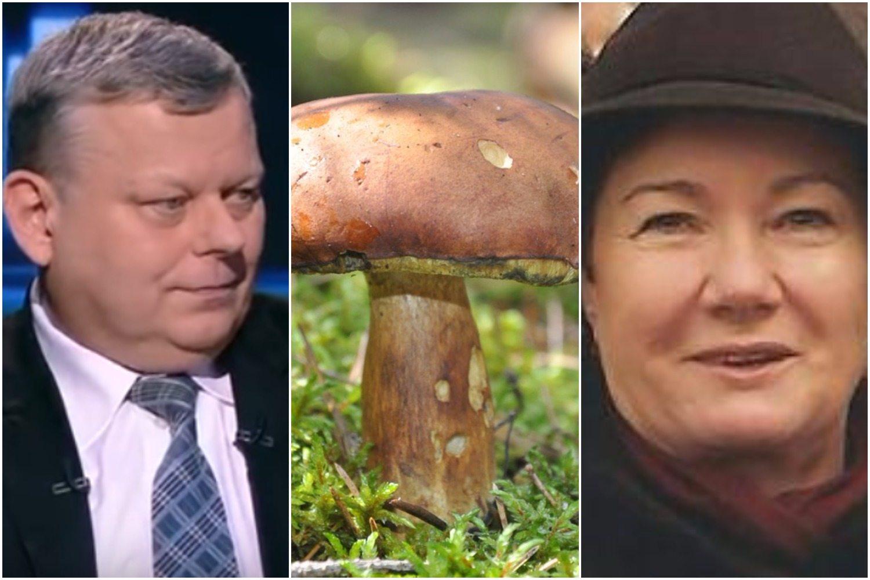 """Suski ujawnia... """"aferę grzybową"""". Tak Platforma miała uratować HGW (VIDEO)"""