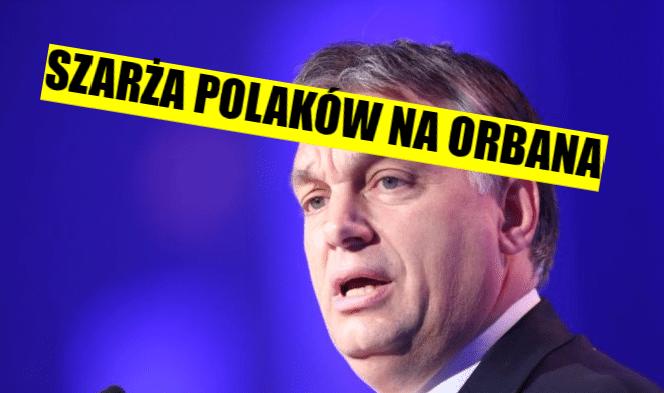 """Wyborcy PiS rzucili się na Orbana. """"Dałeś dupy węgierski zdrajco!"""" (FOTO)"""