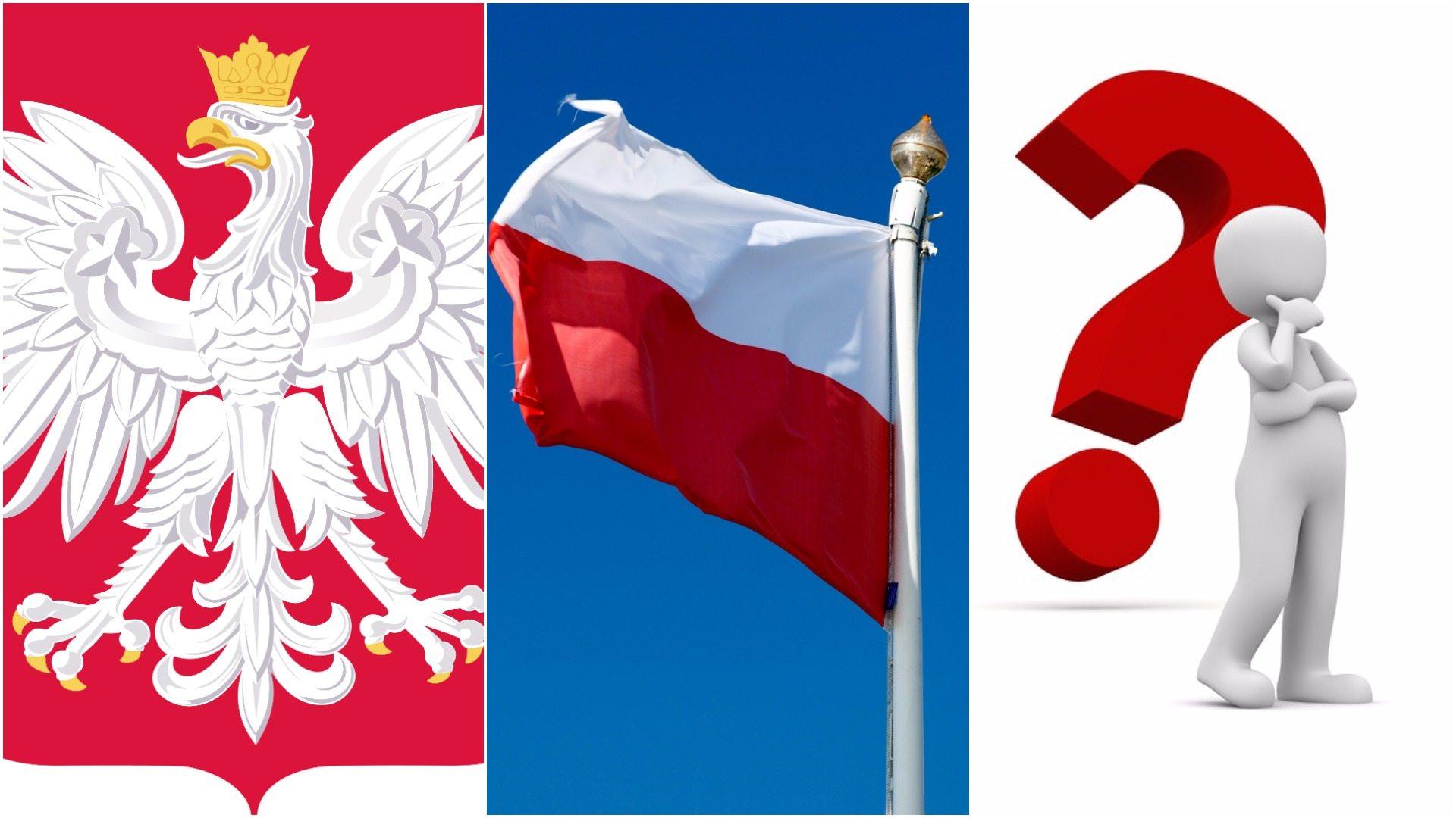 Już nie tylko flaga, godło i hymn. Polska będzie miała nowy symbol narodowy