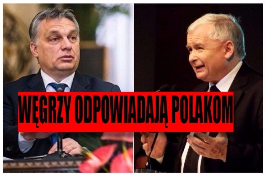 Węgrzy odpowiadają Polakom: Lojalność nie obowiązuje, gdy partner...