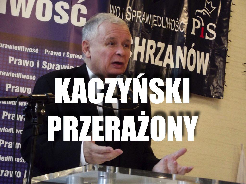 Kaczyński PIERWSZY RAZ przerażony. Nowe badanie to prawdziwy dramat PiS