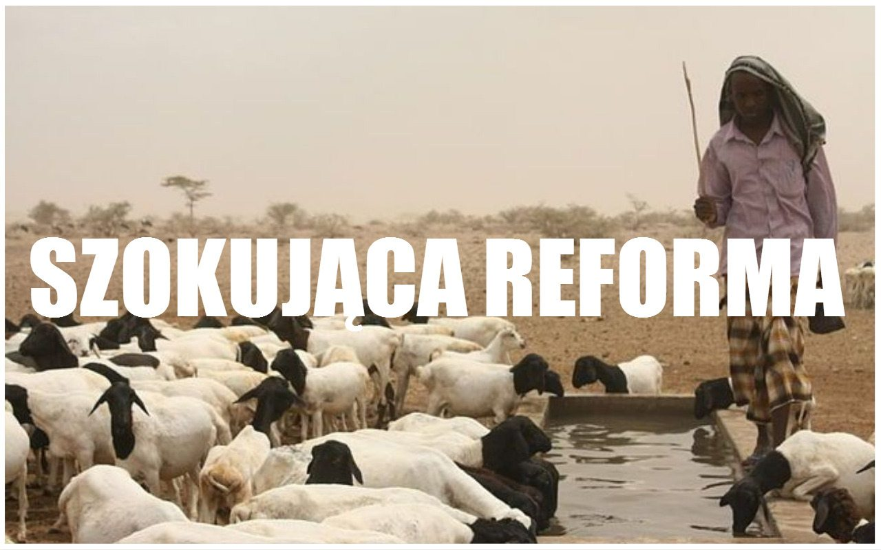 Takiej reformy finansów jeszcze nie było. W tym kraju będą płacić... kozłami i baranami