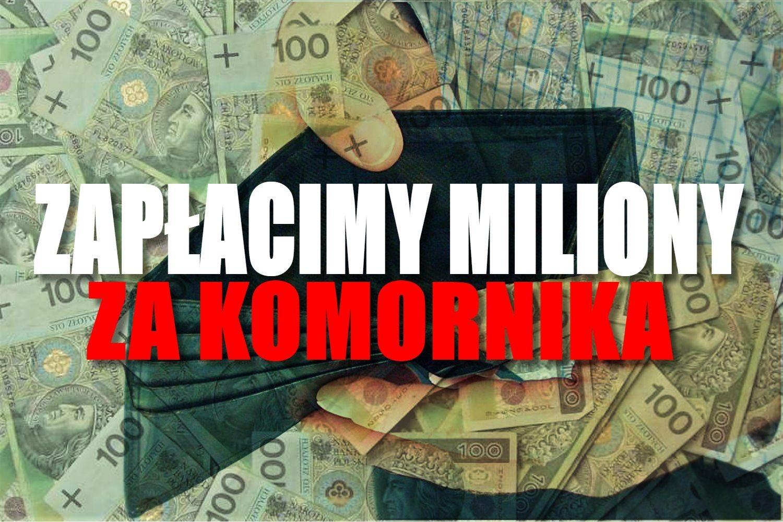 Katastrofa! Zapłacimy 3 miliony złotych za złodziejstwo bezwzględnego komornika