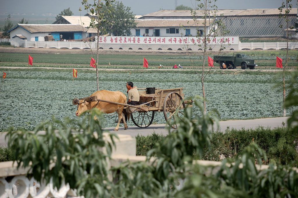 1024px-North_Korea-Sariwon_Migok_Farm-02