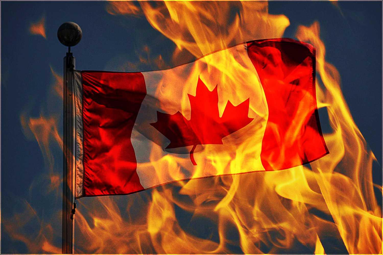 polskie serca w kanadzie