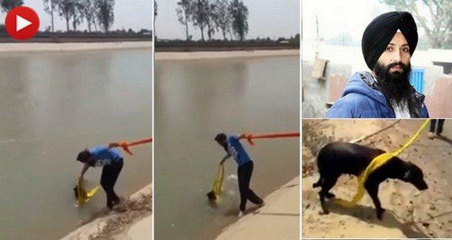 """To było niezgodne z jego religią. Mimo tego zdjął turban i pomógł tonącemu psu. """"W tym czasie ratowanie psa było ważniejsze"""" (VIDEO)"""
