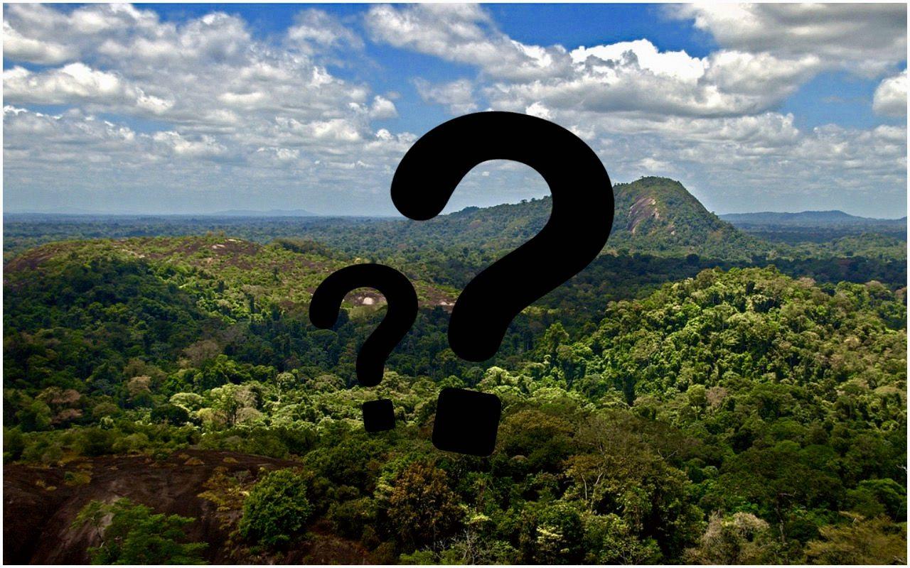 Naukowcom opadły szczęki. Nie uwierzycie, co odkryli w Amazonii