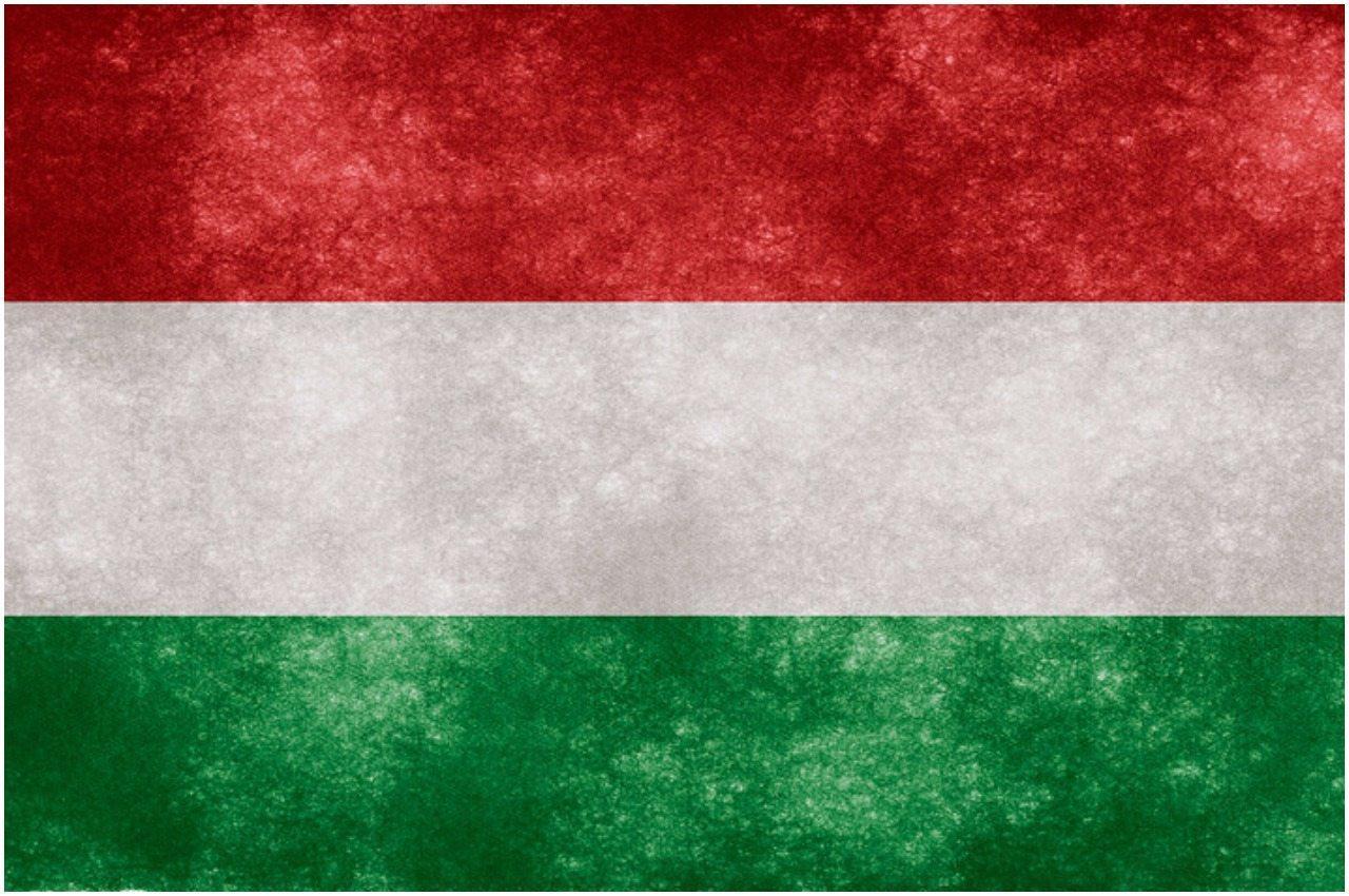 Węgrzy robią interes życia. Aż trudno uwierzyć z kim