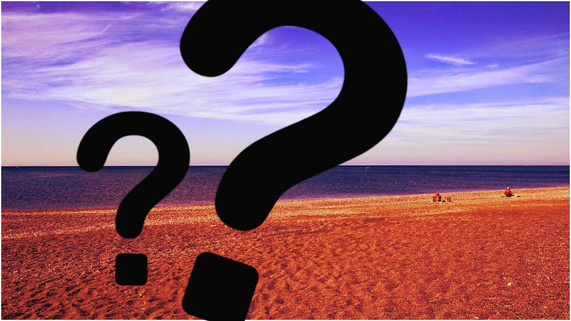 Prawdziwa BESTIA znaleziona na polskiej plaży. Skąd się tam wzięła?