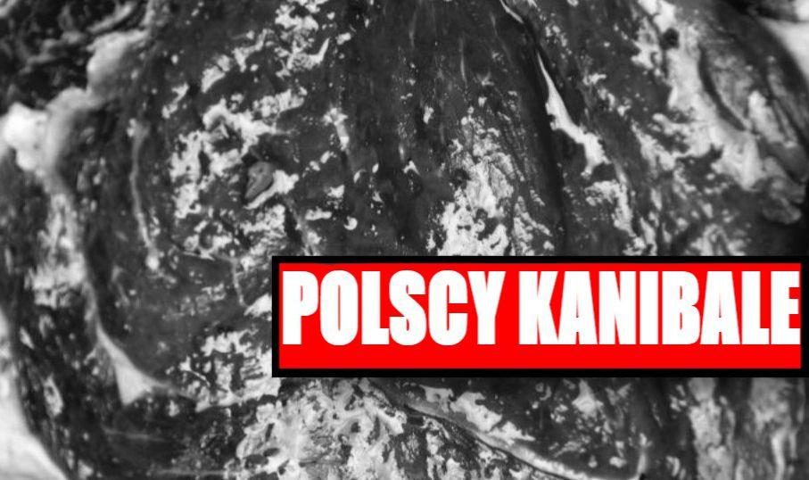 Cała Polska przerażona! Orgia KANIBALÓW w Szczecinie