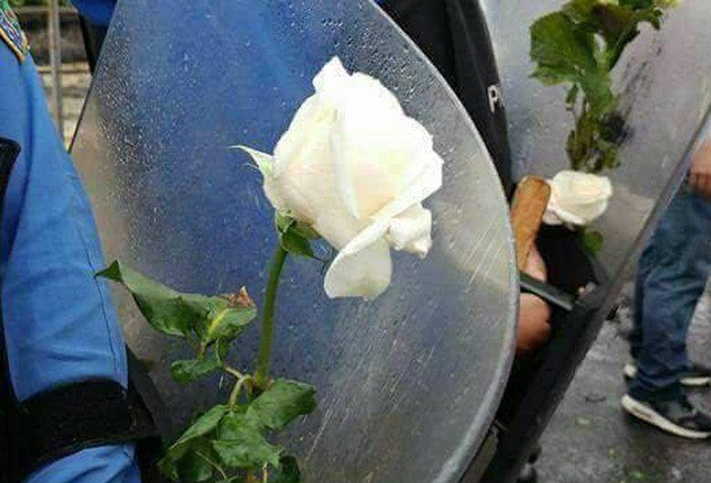 To się dzieje! Policja z różami staje po stronie opozycji