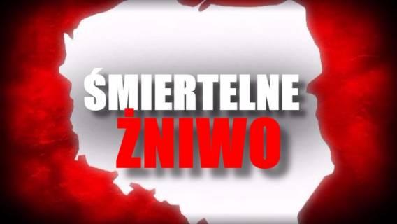 Śmiertelne żniwo w Polsce. Ludzie umierają jak muchy