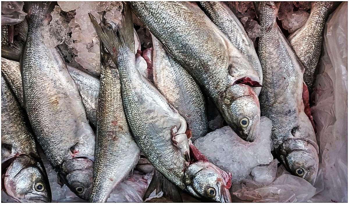 Burza w sieci. Polskie Kardashianki dzisiaj sprzedają ryby