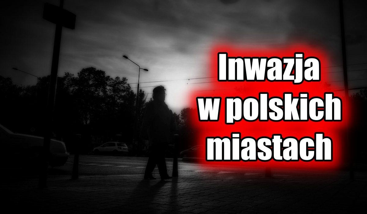 Inwazja w polskich miastach. Choroby i pożary to ich wina