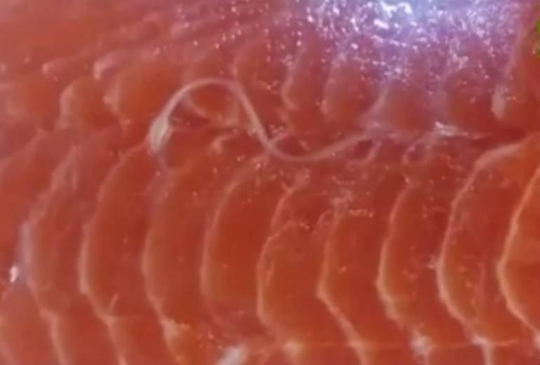 Obrzydliwe nagranie. Tasiemiec pełza po łososiu w dużym hipermarkecie