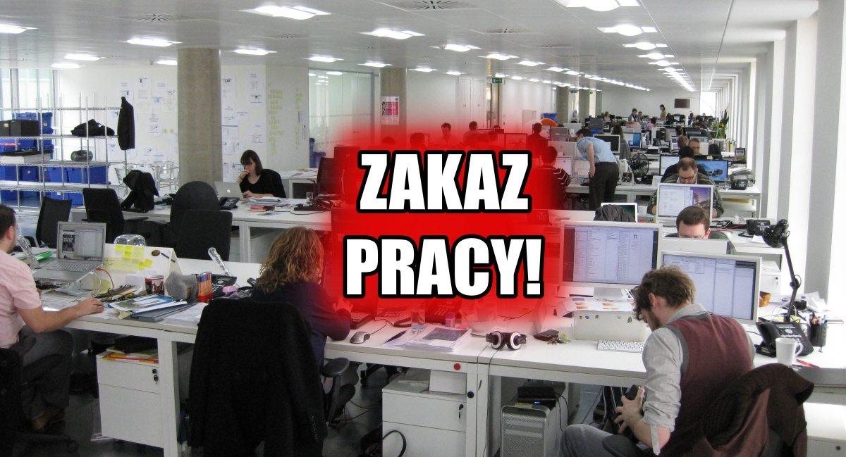 Paranoja! PiS wprowadzi ZAKAZ... pracy dla tych ludzi