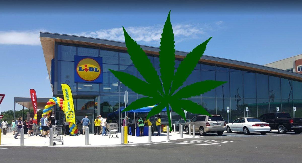 LIDL rozpoczyna sprzedaż marihuany. Jest tylko jeden haczyk