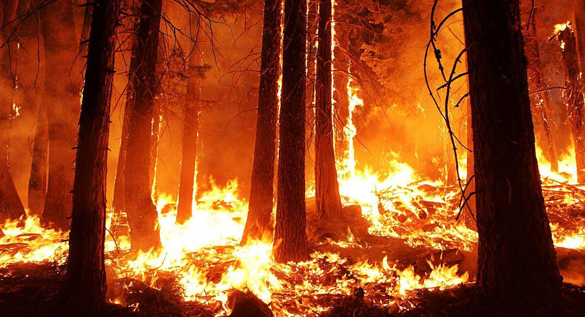 Ogromny pożar w Tatrach! Problem z ewakuacją turystów