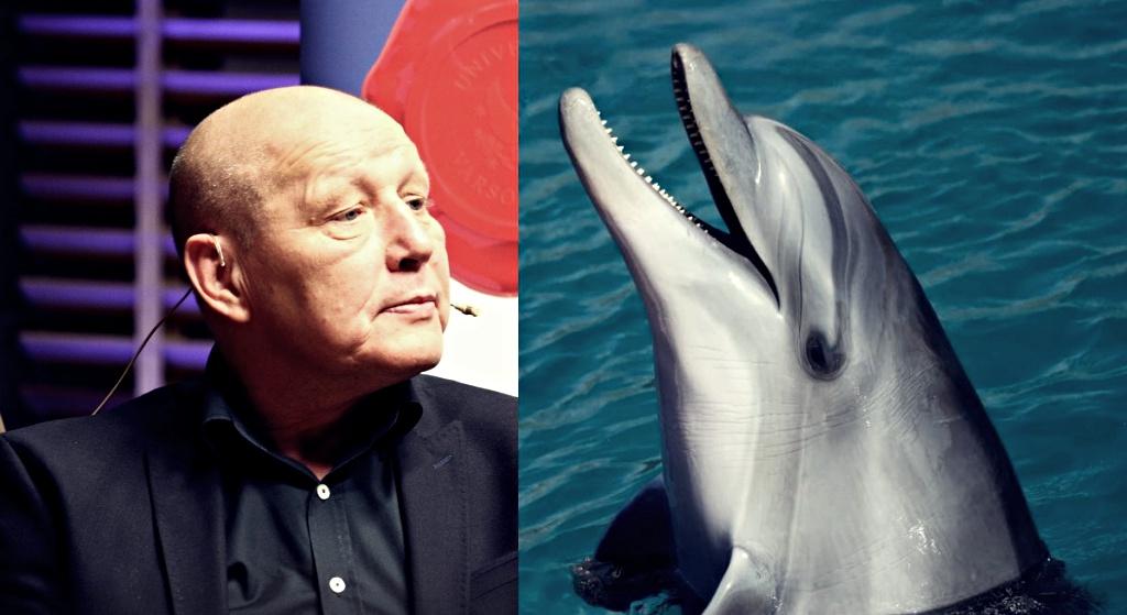 Zaskoczenie na mundialu! Delfin upokorzył Jackowskiego, kompromitacja polskiego jasnowidza