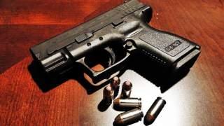 Odyniec: Nie ma wolności bez... dostępu do broni?