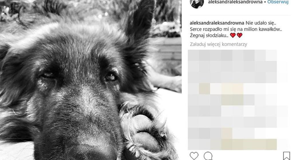 Aleksandra Kwaśniewska - pies