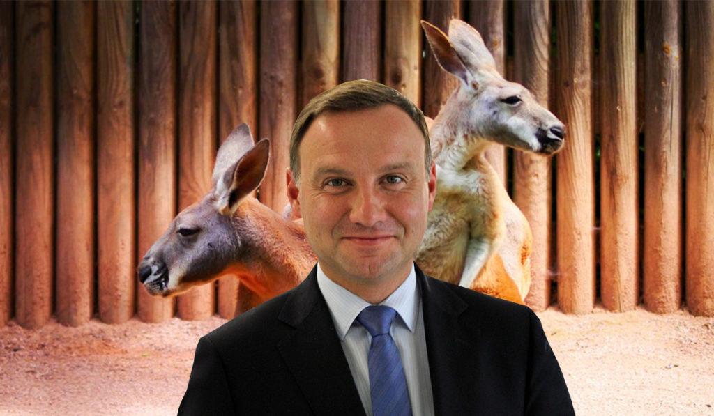 Duda spotka się z kangurami? Politycy w Australii nie chcą go widzieć