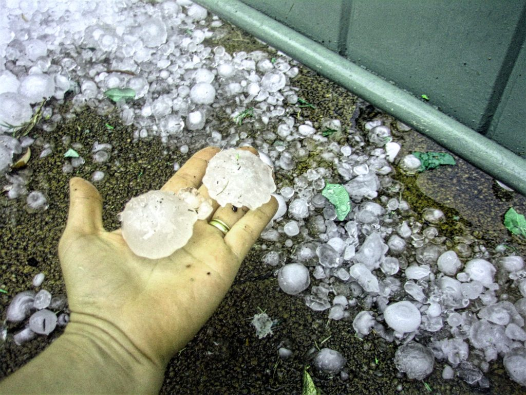 Perth_hail_size_compared_to_hand