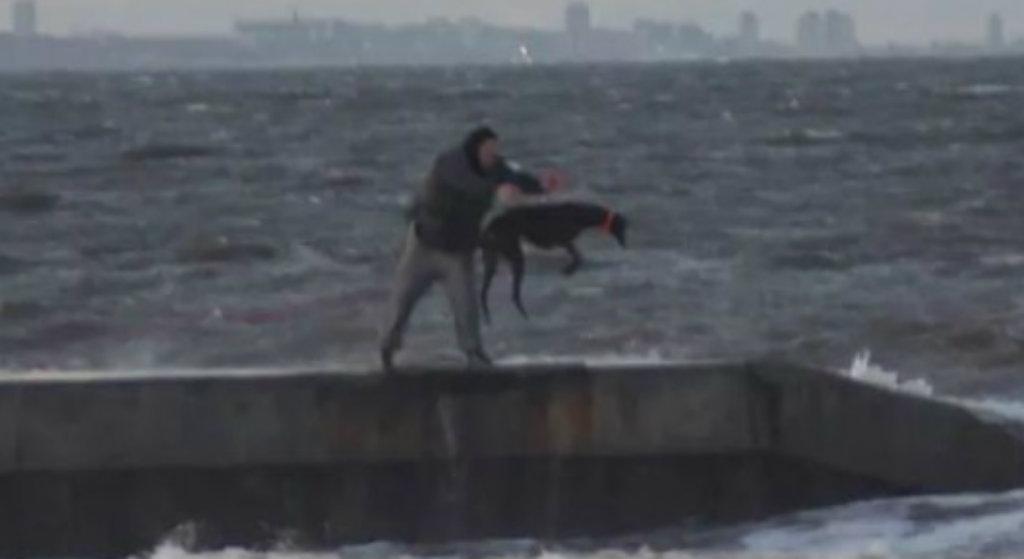 Ludzie byli przerażeni! Bez skrupułów wrzucił swojego psa do lodowatego morza